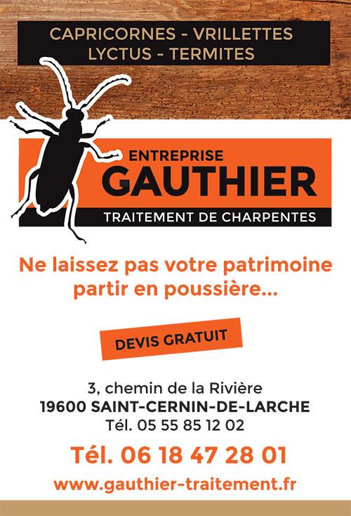 entreprise-gauthier-2015-traitement-charpente